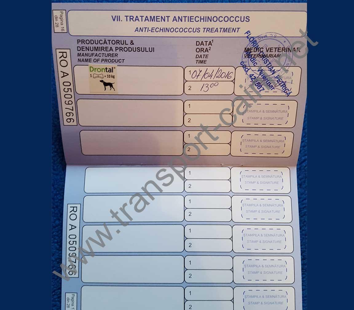 deparazitare în pașaport utilizarea de comprimate cu găuri de vierme
